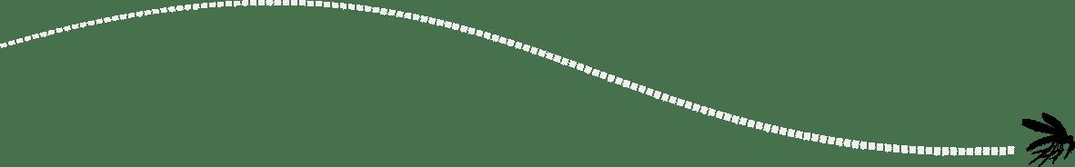 Illustration Stechmücke